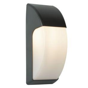 Led Outdoor 1 Light Crescent Wall Light (32cm) Dark Grey/Opal BPOSL608